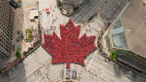 the-living-maple-leaf-as-seen-from-above