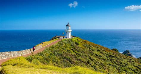 Cape Reinga Full Day Tour   New Zealand Vacation   Goway