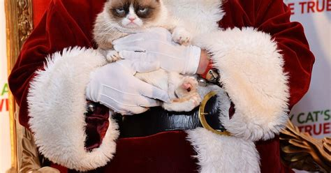 Grumpy Cat meets Santa Claus but even that doesn't cheer